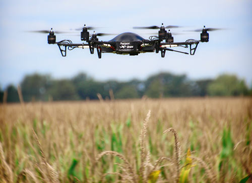 How Drones Are Pushing Further The Agriculture Potential